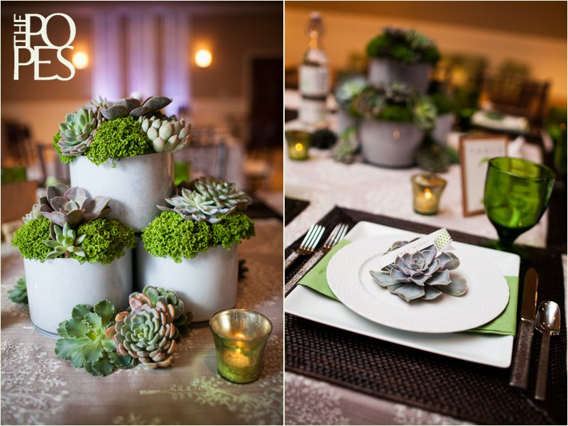 Succulent centerpiece for wedding, flowers by Bella Rugosa.