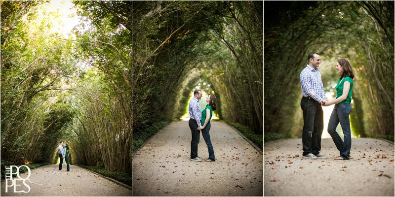 East_Hampton_Engagement_Session_Tree_Tunnel_The_Popes__0499
