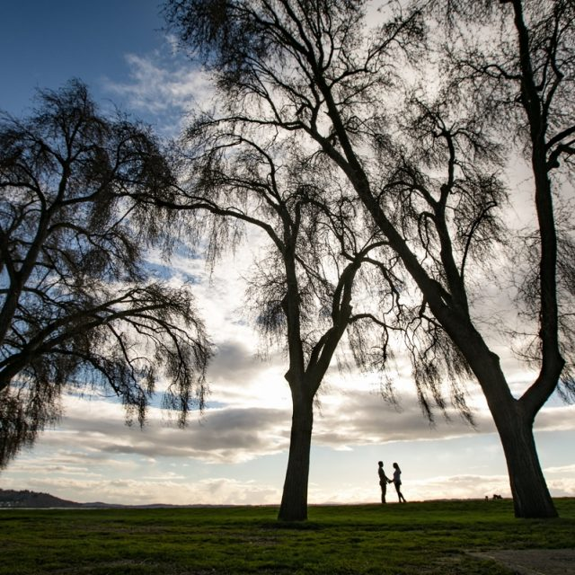 couple_silhouette_trees
