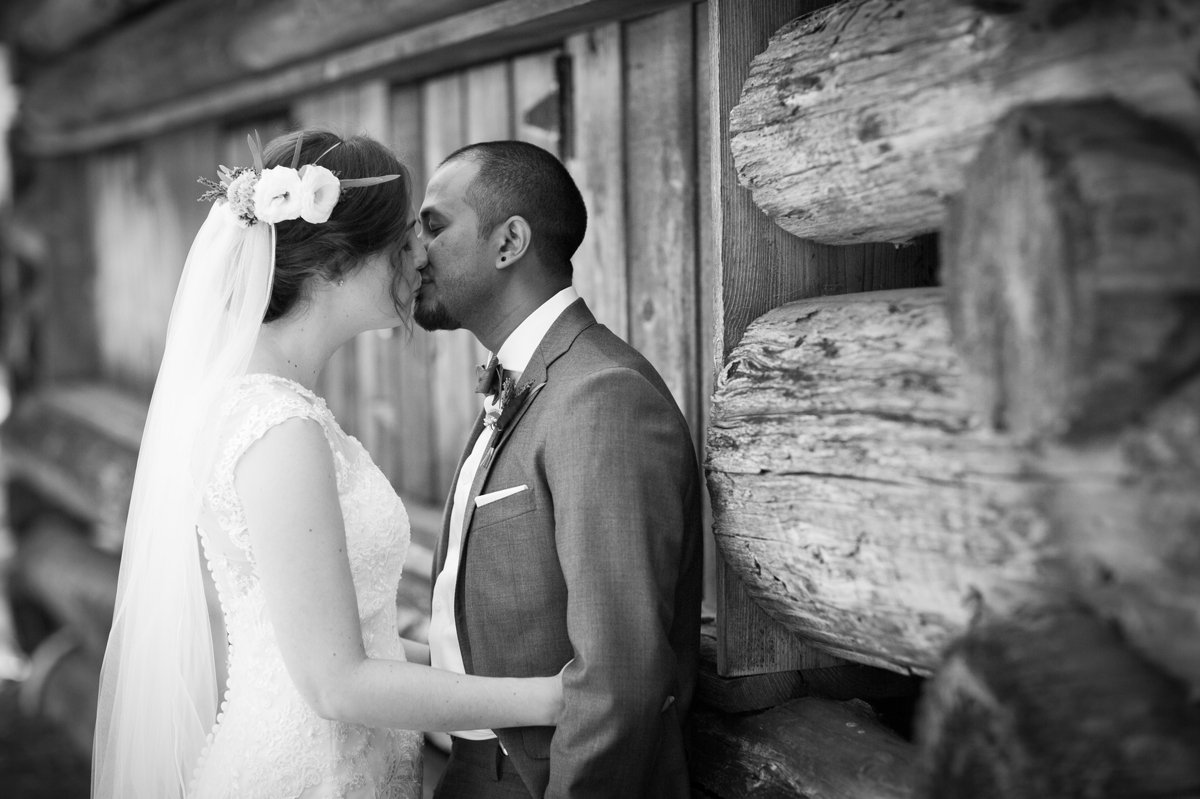 bridal_portraits_log_cabin